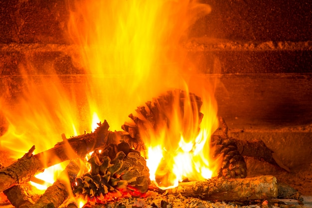 Burning firewood in chimney with pine cones