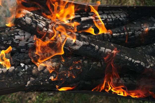 Burning firewood in the fire outdoor