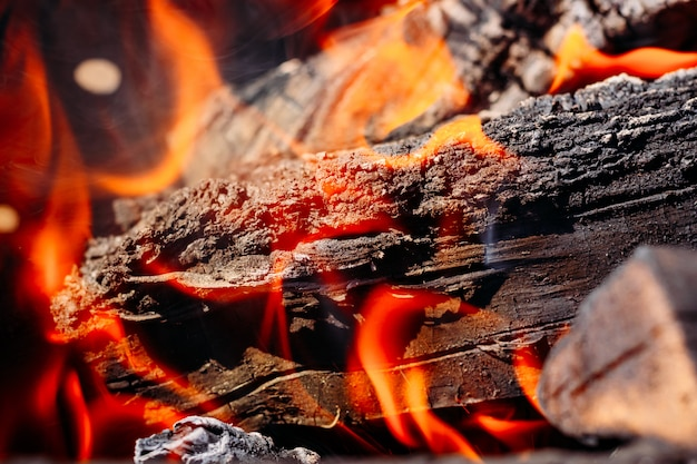 Burning firewood in the grill close up