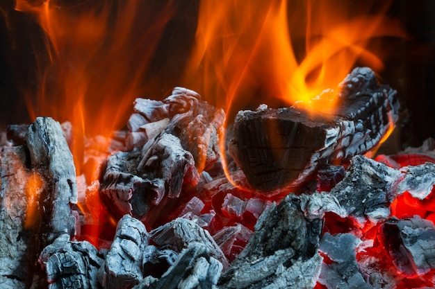 火の中で薪を燃やす