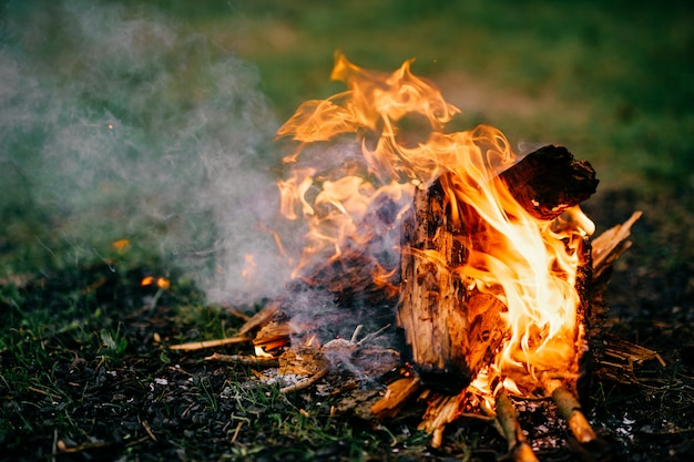 Burning firewood in outdoor summer camp on green grass. travel and tourism. nature leisure rest. wood in flame.