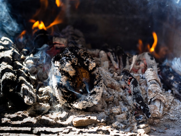 Burning logs in campfire site