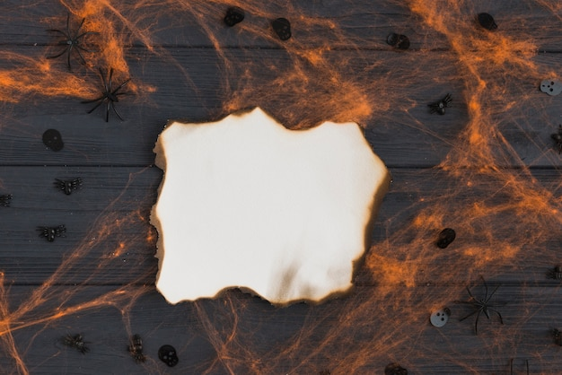 Burning paper with gossamer effects and decorating spiders