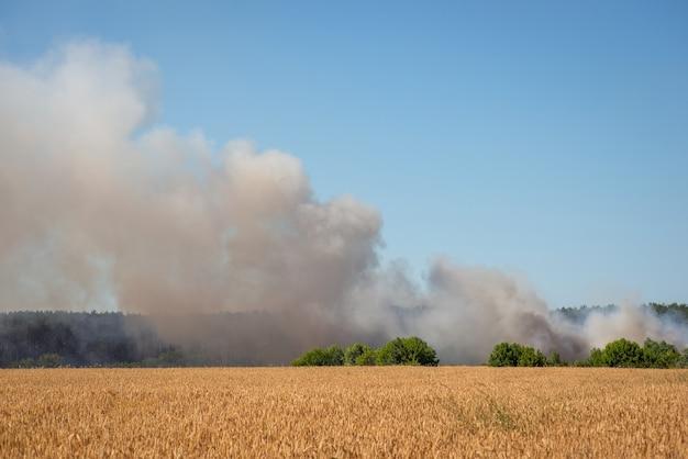 시골의 농경지 근처에 쓰레기 매립장을 태우다