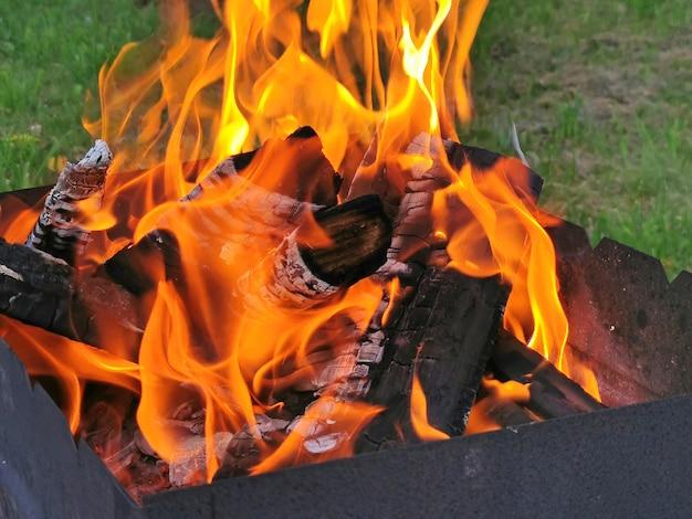 그릴에 불타는 나무 석탄