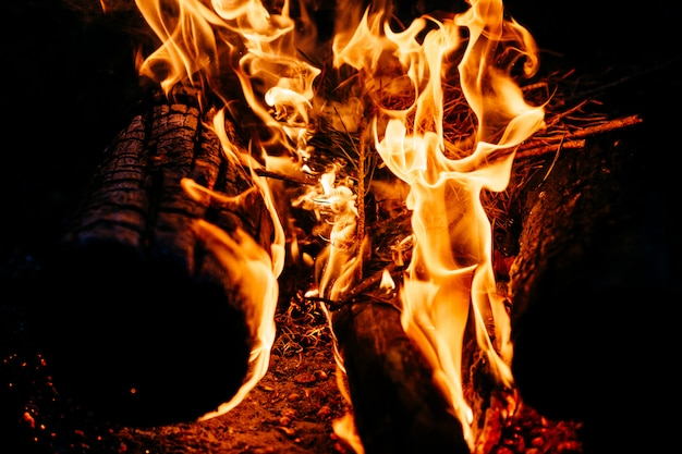 Burning wood at night. campfire at touristic camp at nature in mountains. flame and fire sparks on dark abstract night. cooking barbecue outdoor.
