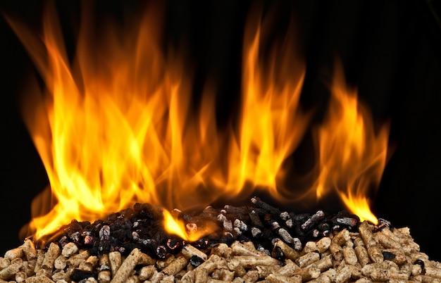 Burning wood pellet