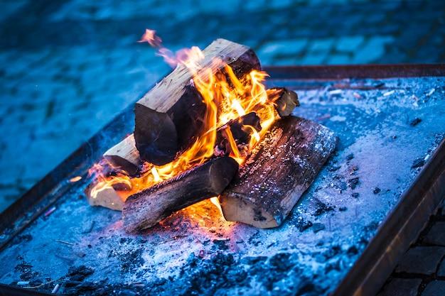 暖炉で燃える森