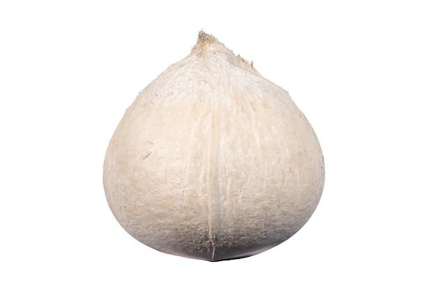 白に焦げたココナッツ。