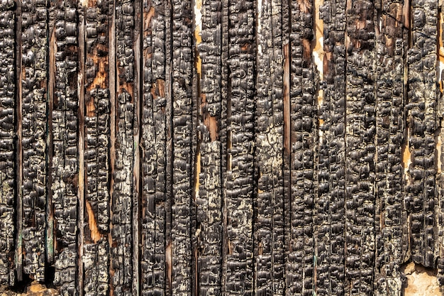 Обгоревший деревянный забор. текстура обугленных деревянных досок.