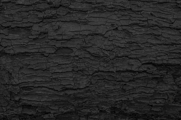 Burnt wooden texture background