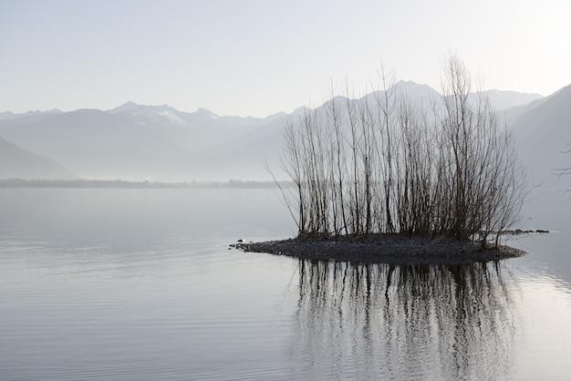 山のある湖の真ん中での茂みとその反射