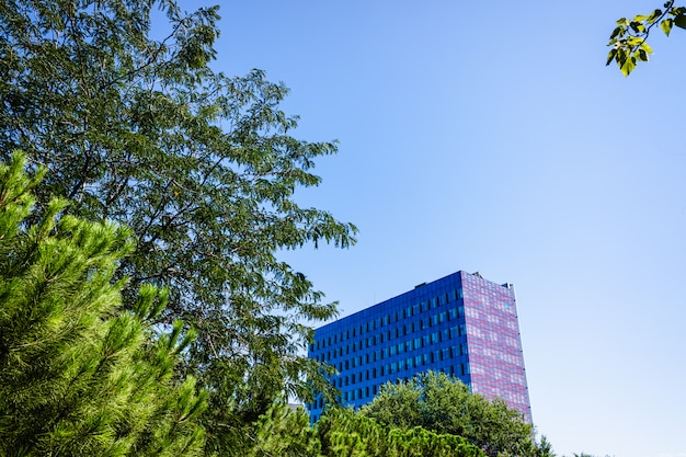 A business building seen from a relaxing park away from the stress.