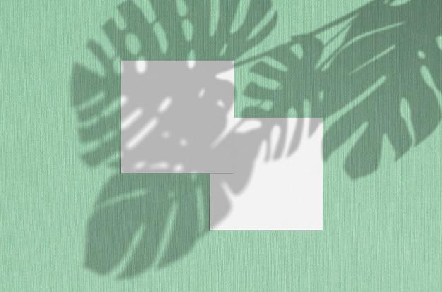 名刺モックアップ。モンステラが影を残す自然なオーバーレイ照明。スクエア名刺。ミントの背景に葉の影のシーン。
