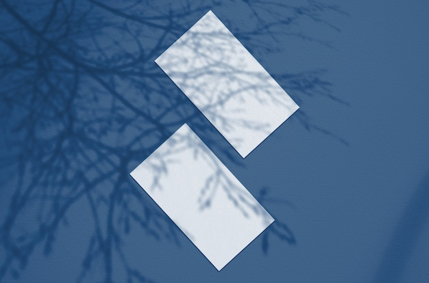 Business card surface. natural overlay lighting shadows the leaves. business cards 3.5x2 inch. scene of leaf shadows. classic blue color. color of the year 2020.