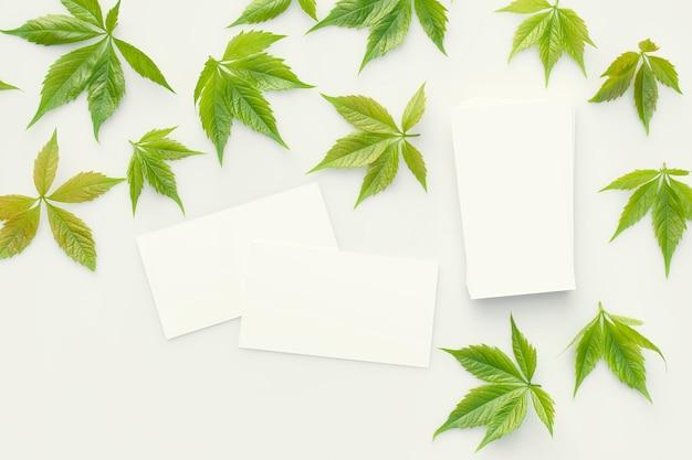 Визитки разбросаны на сером столе среди зеленых свежих листьев вид сверху