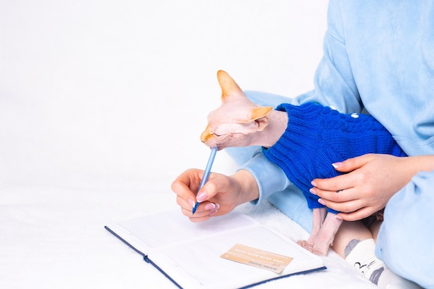 비즈니스 교육 학교 애완 동물 홈 케어 개념 스핑크스 고양이 흰색 소파 배경에 은행 신용 카드 근처 일기에 발을 공부하거나 원격 작업을 돕는 소유자 연필과 함께 노는 고양이