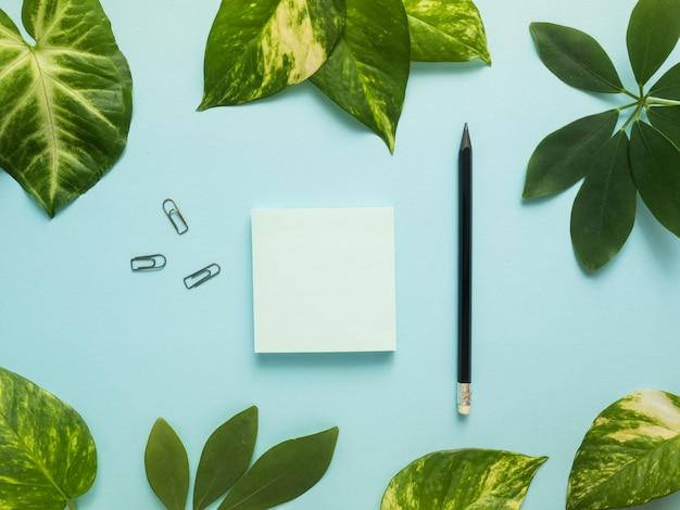 カラフルな青い背景にコピースペース、電卓、鉛筆、メモ帳でビジネスフラットを置く植物の緑の葉。