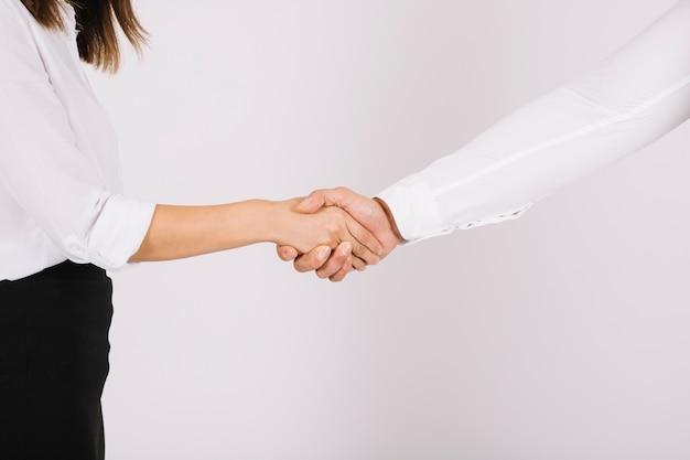 Business handshake concept