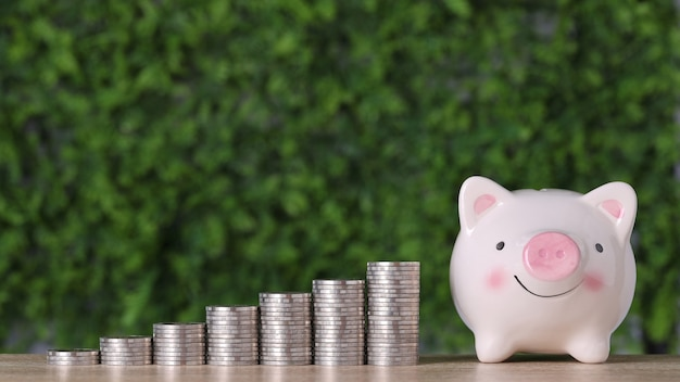 Business investment and saving growth for advertising concept. stacking coin growing with pink piggy bank on green nature background, meaning of growing or saving or earning money