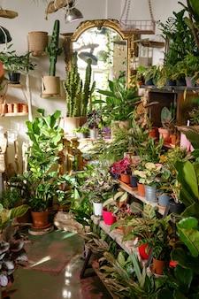 꽃가게 트렌디한 인테리어 꽃과 식물 가게 중소기업에서 홈 디자인 사업