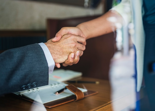 Partner commerciali che agitano le mani in accordo