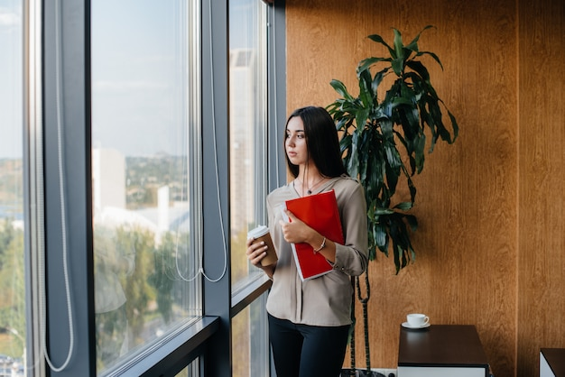 Business woman is standing in the office near the window and is studying documents. business, finance, lawyer