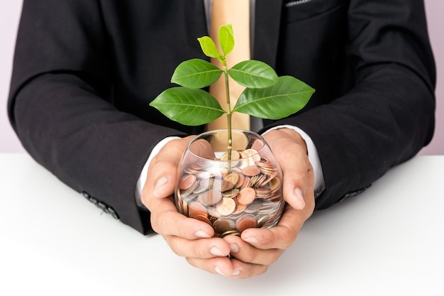 Businessman hand putting the coins and plant on the glass, concept of saving  money for finance acco
