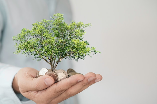 Businessman holding heap of coins inside hand with tree on white background, money saving and investment profit growth concept.