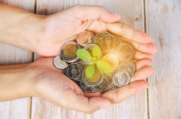 소수의 동전 금융 개념 사업 배경에서 돋아난 식물을 들고 있는 사업가입니다.