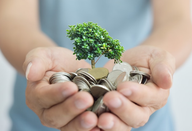 Businessman holding tree sprouting from a handful of coins.
