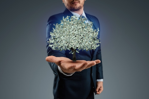 A businessman holds a tree with dollars instead of leaves on his hand