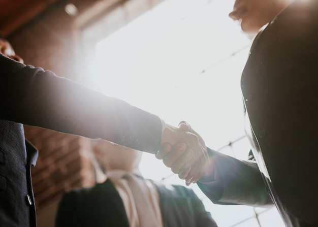 Businessmen greeting by a handshake