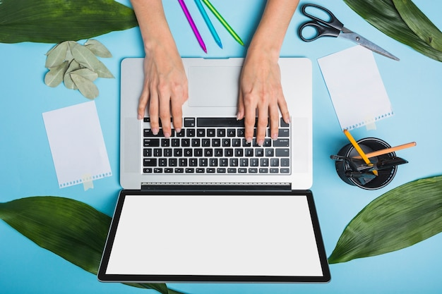 Businessperson's hand using laptop with green leaves and stationeries on blue background