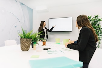 Businesswoman giving presentation to her colleague
