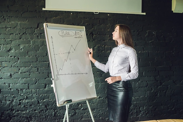 Bussiness meeting and education  businesswoman with flipchart in office