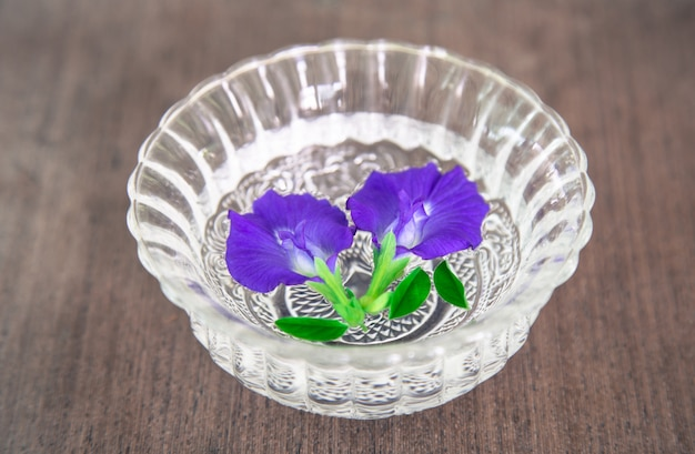 Butterfly pea in bowl on wood background