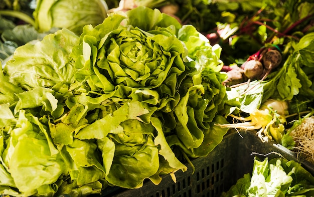 Butterhead lettuce with green vegetables on market stall at organic farmers grocery store