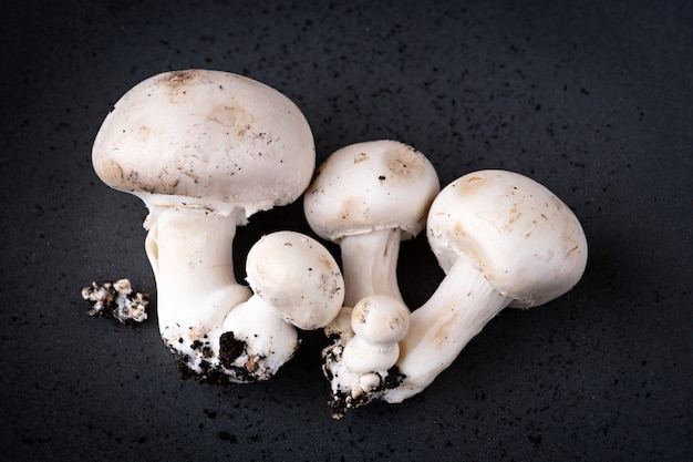 Button mushrooms growing with soil, presented on a grey plate