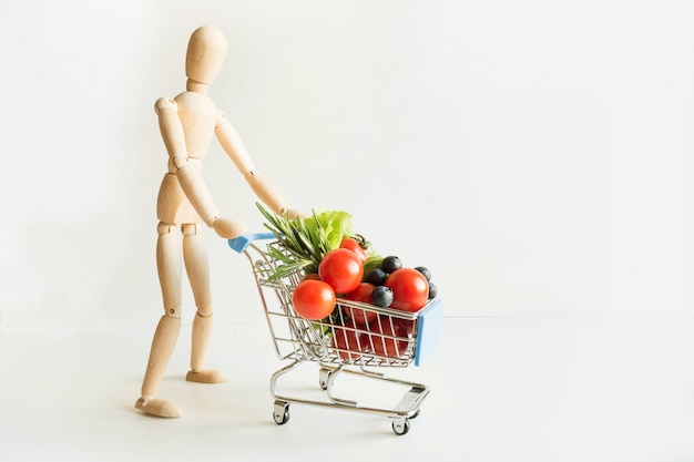 Buyer as dolls with grocery trolley. full food basket.