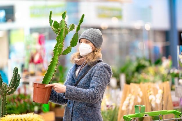 店で植木鉢にサボテンを買う