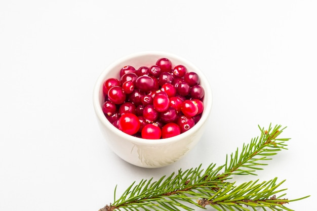 松の枝が白い背景で隔離のボウルに熟した新鮮なクランベリー。冬の健康的な食事。有機および菜食主義の食糧はビタミンcを含んでいます