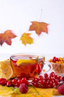 秋の健康飲料のコンセプトです。秋の果実海クロウメモドキ、ガマズミ属の木、ローズヒップ、ナナカマド、秋の葉とお茶のカップ。ビタミンcと一緒に飲む