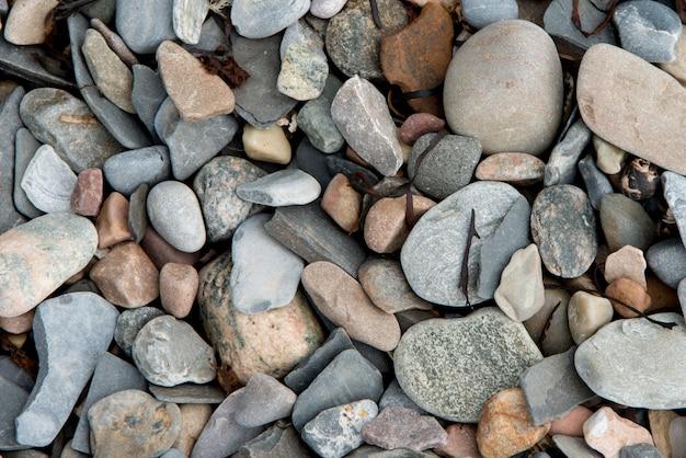小石、ボンベイ、ノリスポイント、グロス・モーン国立公園、ニューファンドランドアンドラブラドール、cのクローズアップ