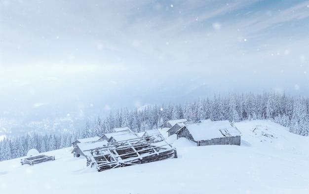 겨울에 산속에 오두막. 신비한 안개. carpathians. 우크라이나, 유럽.