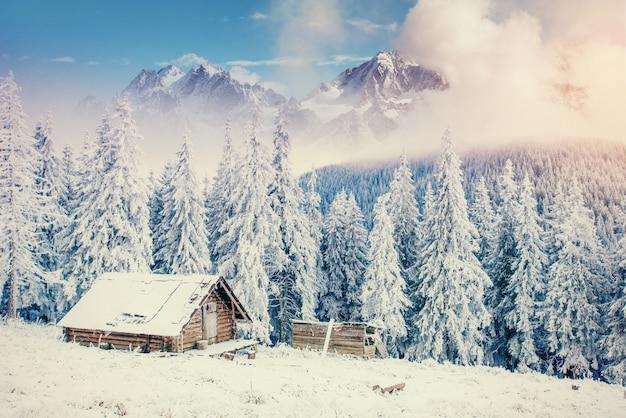 Хижина в горах зимой. таинственный туман.