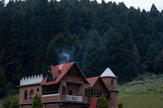 Хижина в лесу на фоне деревьев и дыма, выходящего из трубы