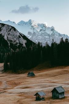Cabine vicino foresta e montagna ricoperta di neve