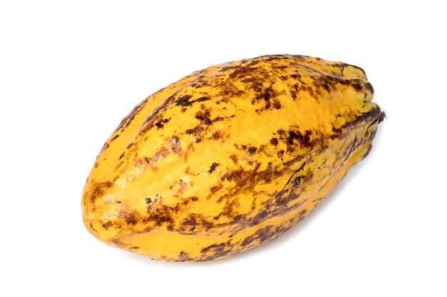 カカオフルーツ、生のカカオ豆、白い背景の上のココアポッド