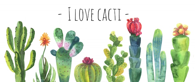 Cacti watercolor collection set.